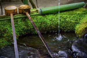 Fontaine en bambou au Parc oriental de maulévrier